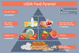 What Is Food Pyramid Chart Healthy Diet Plan