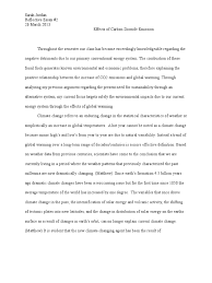 reflective essay climate change global warming