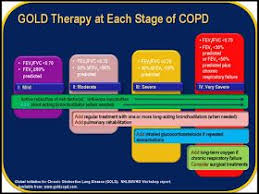 Copd Guidelines Chart