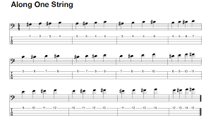 I'm going to show you the easiest song list to play on guitar. The First Things You Should Learn On Bass Guitar