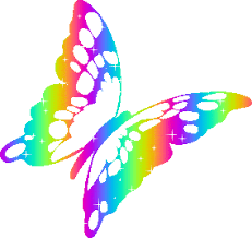 Image result for butterfly pics