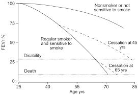 Epidemiology Of Copd European Respiratory Society