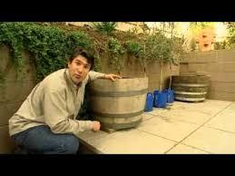planting up wine barrels