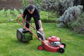 4 Good Reasons To Hire A Lawn Care Company