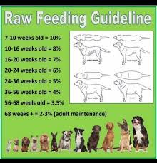 Raw Feeding Chart For Puppies Raw Feeding Guidelines Raw Feeding For Dogs Raw Pet Food