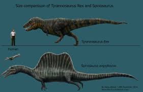 megalodon shark compared to t rex. Contemporary Shark Spinosaurus And TRex Size Comparison By HarrytheFox  On Megalodon Shark Compared To T Rex I