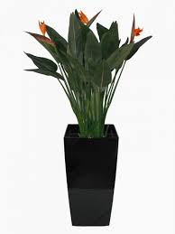 office pot plants. Artificial Complete Displays Office Pot Plants O