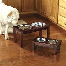 raised dog bowls feeding elevated food adjustable best