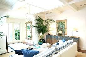 palm tree decor for living room pretty design home