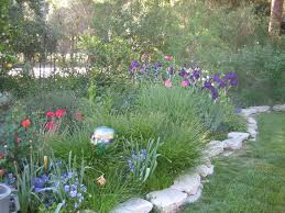 orange county cottage garden landscape design