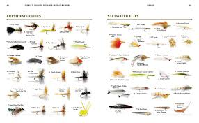 Fly Fishing Flies Chart Complete Guide To Fresh And Saltwater Fishing Conventional