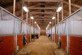 horse barn animal sport paddock equestrian ranch racing le min e1436992435563 horseback riding ranch