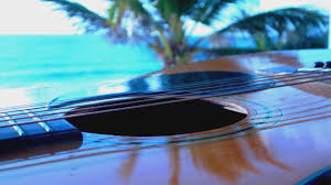 Image result for pics of acoustic guitars water background