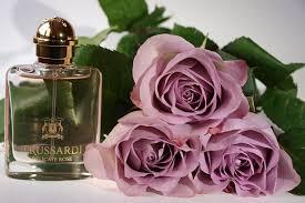 Описание духов <b>Trussardi Delicate Rose</b> (Труссарди Деликат ...