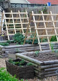 vegetable garden carmen johnston gardens