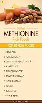 Foods Low In Methionine Chart 10 Best Lysine Rich Foods Food Lysine Rich Foods Healthy