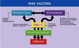 effect of drug abuse essay writing an essays do my assignments effect of drug abuse essay