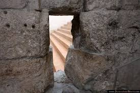 Image result for enter the  kingdom