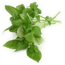 Pin by Wendi Mason on Ocado Orla Kiely Competition | Herbs for  inflammation, Herbs, Holy basil
