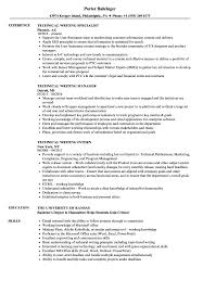 Technical Writing Resume Samples Velvet Jobs