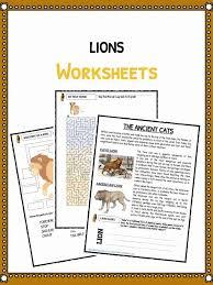 Lion Facts Worksheets Information For Kids