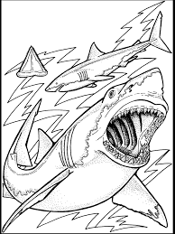Small Picture adult coloring pages of the ocean free coloring pages of ocean