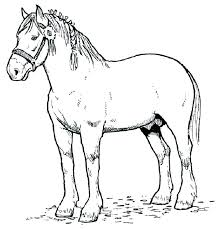 spirit horse coloring pages horse coloring pages heart coloring pages for teenagers coloring page draft type realistic horse coloring pages horse coloring
