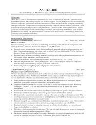 Marvelous Example Of Resume For Marketing Manager In Resume Sample