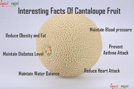 Cantaloupe Nutrition Chart Nutrition Chart For Cantaloupe