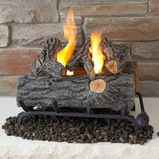 gel fuel fireplace insert astonishing on home decorating ideas for yours inserts 11