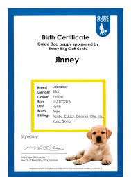 dog birth certificates dog birth certificates example dog birth certificate monpence