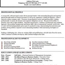 examples of personal statements for resumes template examples of personal statements for resumes
