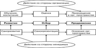 Управление карьерой персонала варианты разработки плана  Схема взаимодействия организации и менеджера в процессе управления его карьерой