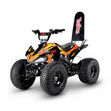 tr290 buy tomride professional electric youth atv quad vtt 1000w