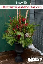 Find Out Which Evergreens Work Wonders In Containers  HGTVContainer Garden Ideas For Winter