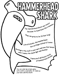 hammerhead shark coloring pages. Exellent Hammerhead Hammerhead Shark Shark Coloring Page For Coloring Pages