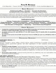 Resume Sample 5 Senior Executive Resume Career Resumes Executive