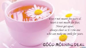 Good Morning Friday Quotes Cool Good Morning Quotes Eyes Are Not Meant For Tears BoomSumo Quotes