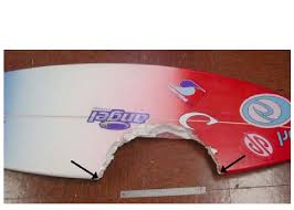 Tiger Shark Classification Chart Bite Damage To A Surfboard Produced By A Large Tiger Shark
