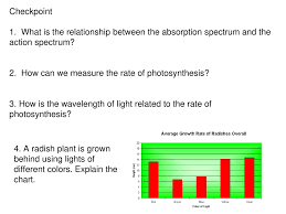 Photosynthesis Alphabet Chart Chapter 7 Photosynthesis Ppt Download