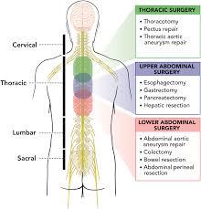 pain relief alternatives to epidural