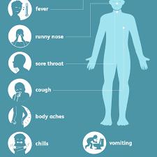 Swine Flu H1n1 Flu Symptoms