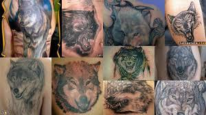 фото тату оскал волка клуб татуировки фото тату значения эскизы