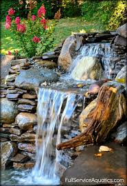 Small Picture 281 best Garden Ponds Waterfalls and Features images on Pinterest