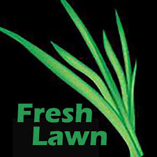 fresh lawn mowing service. Interesting Mowing Fresh Lawn Mowing Service And R