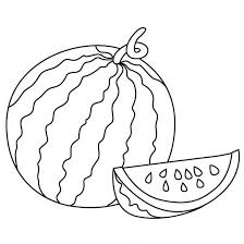 Small Picture Watermelon coloring pages 7 Nice Coloring Pages for Kids