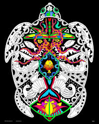 Black Velvet Coloring Pages Fun Time