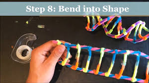 how to make a dna model using pipecleaners project demonstration you