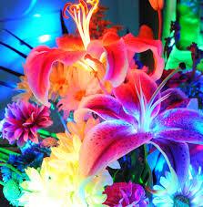 Neon Flowers  #neon #neonflowers #flowers #. Colorful ...