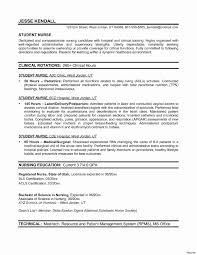 Resume Form Simple Nursing Resume Form Professional Experience Eduacation 67